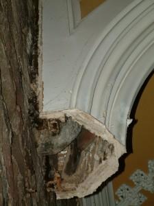 Post 23 (b) Corbel & Clean Plaster Break from Below Left.